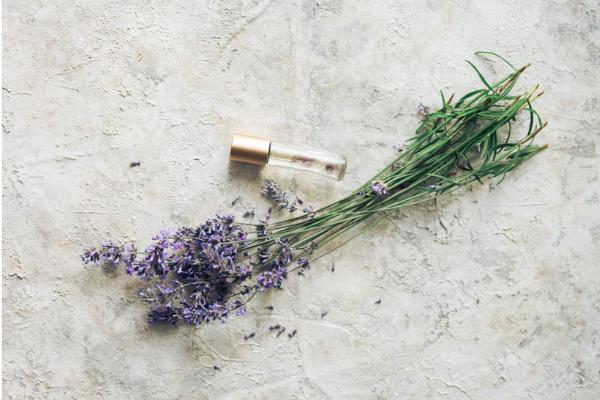 Essential oils for bug bites