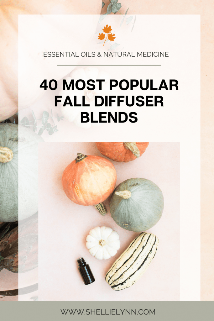40 Most popular fall diffuser blends